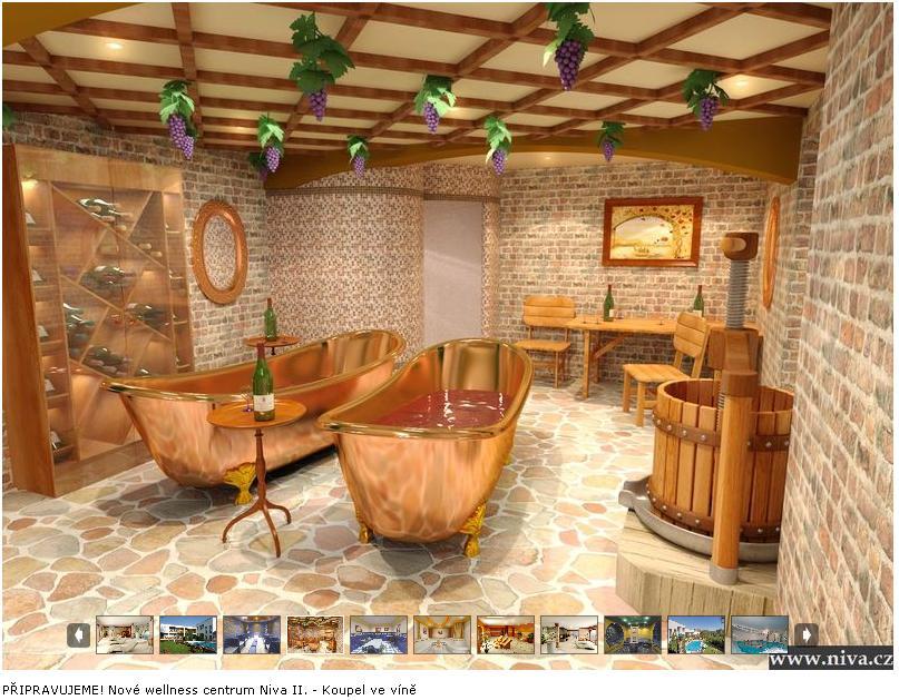 Koupel ve víně - lázeňský hotel Niva II.