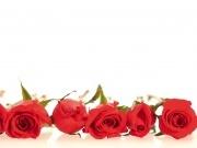 romant4